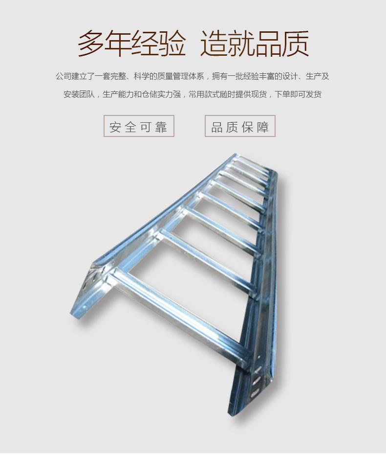 梯式桥架_02.jpg